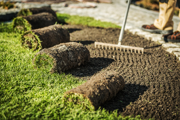 lawn-care-contractor-prepares-area-for-sod-install-CHTEQU7