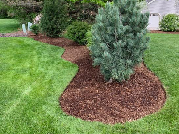 mulch,-edging,-bed-maintenance